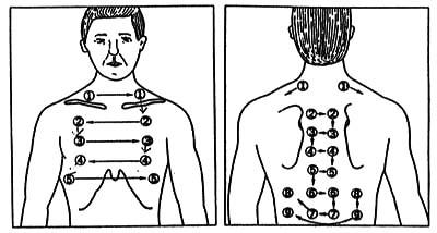 聴診 器 肺炎