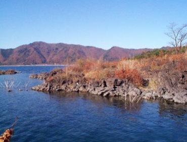 富士 五 湖 最後 に でき た 湖