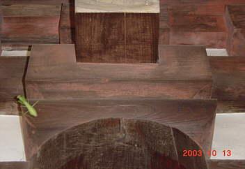 法隆寺回廊組物にバッタが。 2003.10.13
