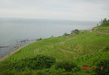 3、道の駅千枚田(輪島) pot2005.07.02