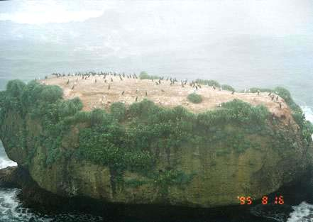 嶮暮帰島(ケンボッキ島)